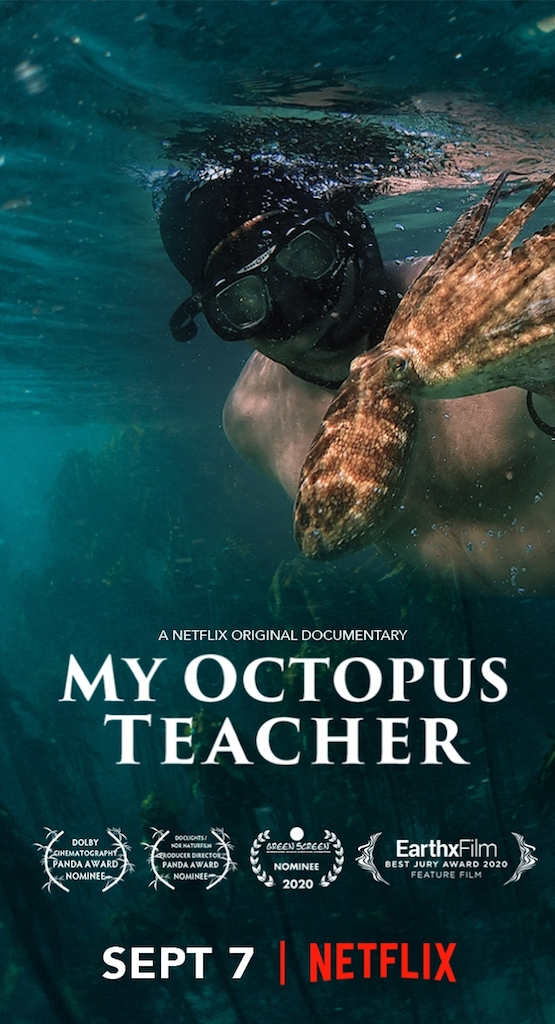 My Octopus Teacher Film Poster. PC: Sea Change Project