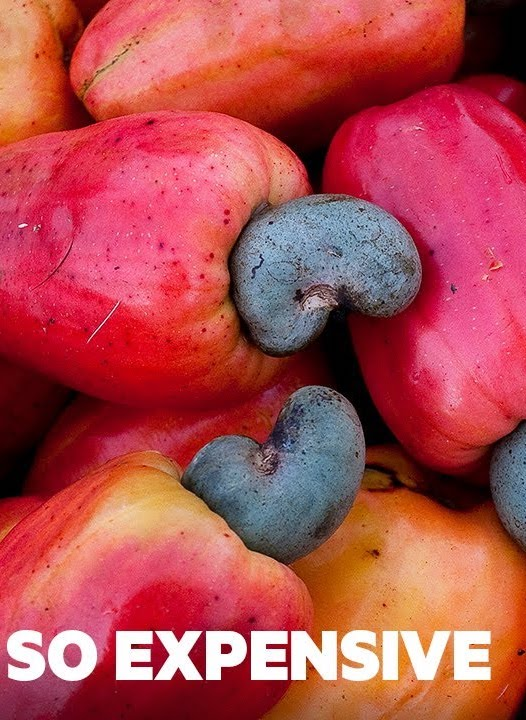 Why Cashew Nuts Are So Expensive