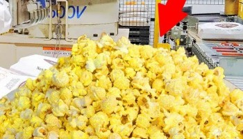 How Popcorn Is Made